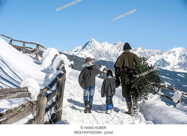 Austria, Altenmarkt-Zauchensee, father with two sons carrying Christmas tree in winter landscape