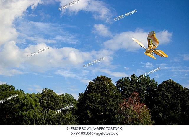 A kite is flown over Central Park, NYC