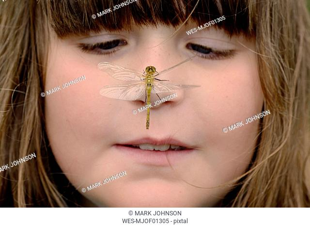 Girl watching dragonfly sitting on her nose