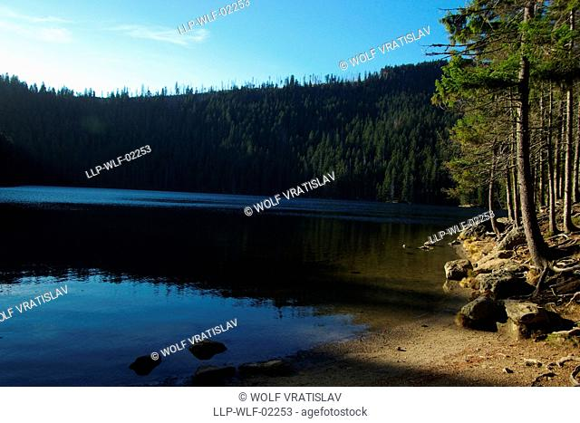 Devil's Lake, Sumava National Park, the Southwestern Bohemia, Czech Republic