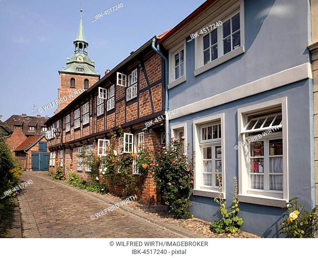 Houses in brick Gothic style, church St. Michaelis at back, historic centre, Lüneburg, Lower Saxony, Germany