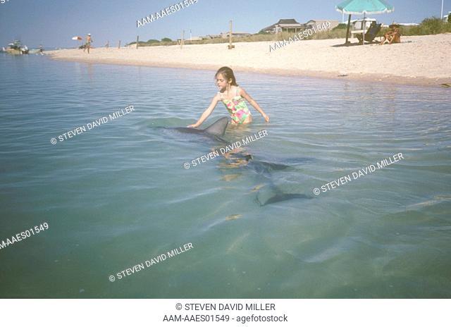 Visitors to Monkey Mia Hand Feeding Wild Dolphins Shark's Bay/W. Australia