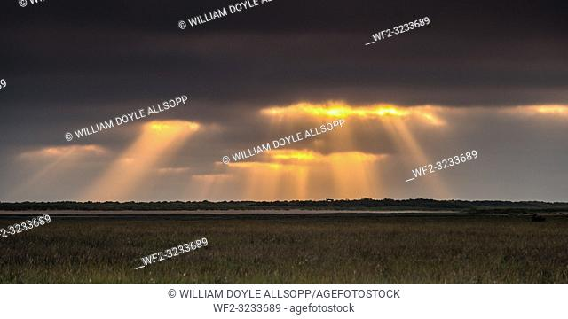 Crepuscular rays form over the marshes at Thornham, Norfolk at sunrise