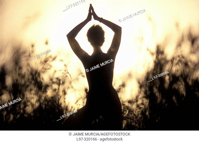 silhouette of a yoga teacher
