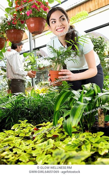 Customers choosing plants in a greenhouse