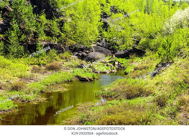 Spring trees reflected in a small creek on the Estair Road, Greater Sudbury, Ontario, Canada