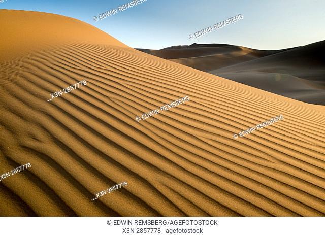 Liwa Oasis, Abu Dhabi , United Arab Emirates -, sunlight over rippling sand dunes in desert The Empty Quarter (Rub' al Khali) of the arabian peninsula is the...