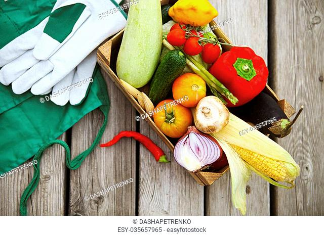 Fresh farmers market fruits and vegetables from above with copy space