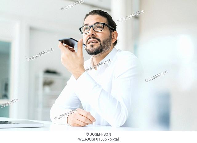 Portrait of businessman on the phone in his office