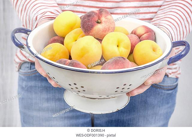 Woman's hands holding colander with apricots and flat peaches