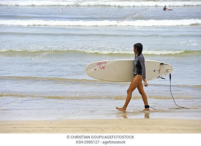 surfer at Weligama bay, South coast, Sri Lanka, Indian subcontinent, South Asia