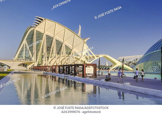 Spain, Valencia City, The City of Arts and Science, Calatrava architect