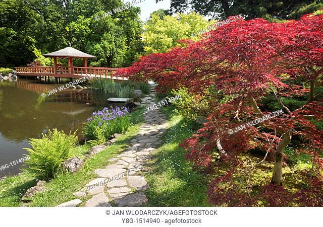 Wroclaw, Japanese Garden in Szczytnicki City Park, Poland