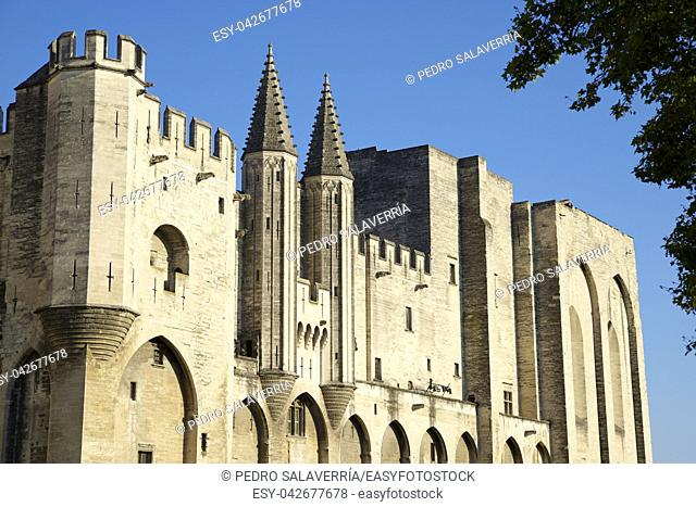 Popes Palace in Avignon, Provence, France