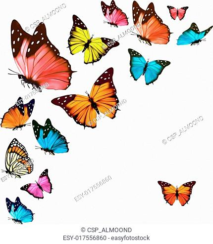 Background with colorful butterflies. Vector