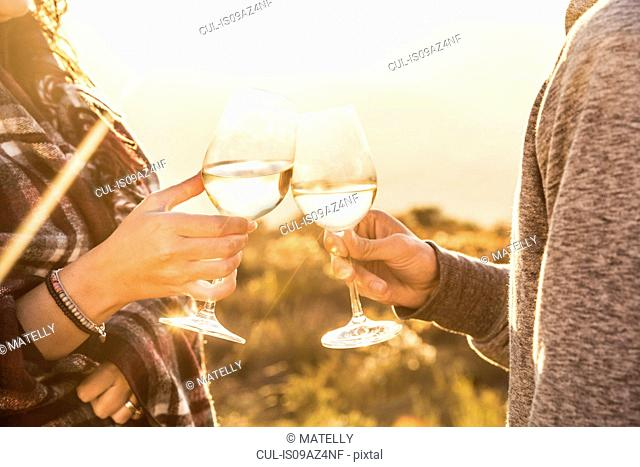 Couple in field making a toast