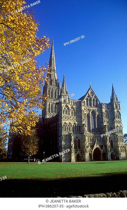 Autumn view of Salisbury Cathedral