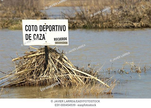Ebro River floodings. Feb. 2003. Pina de Ebro, Zaragoza province. Spain