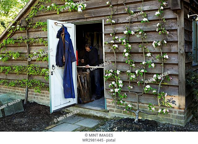 A garden shed workshop with plants trained up the outside, flowering. View through the open door of a man at work
