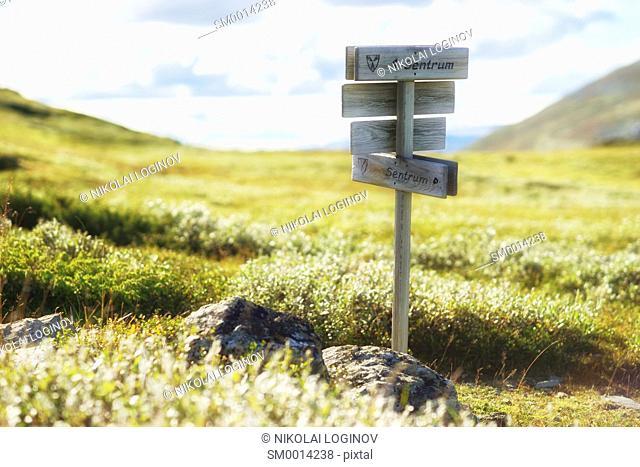 Summer Norway Sentrum pointer background hd