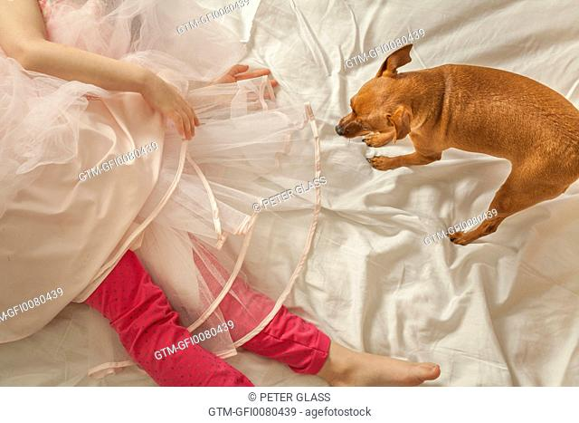 Little girl and her pet dog