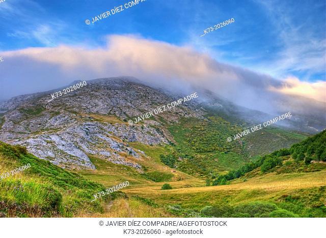 El Mostajal. Picos de Europa Regional Park. Leon Province. Castilla y Leon. Spain
