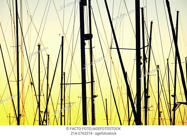 Boats masts silhouettes. Denia. Valencia Community. Spain