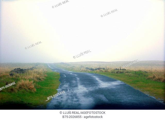 rural road with no one, with mist in Yorkshire Dales, England, UK
