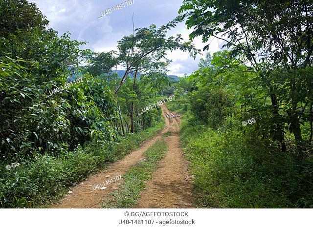 Guatemala, Alta Verapaz, Sapalau Samutzi, dirt road