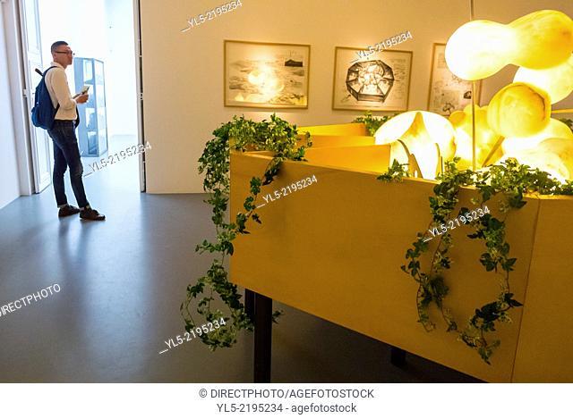 "Paris, France, French Modern Art Gallery, in the Marais Area, Galerie Perrotin, Exhibition, Credit Artist: """"Chen Zhen"""""
