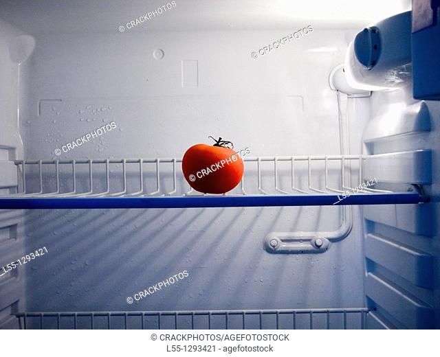 Lonely tomato in a fridge