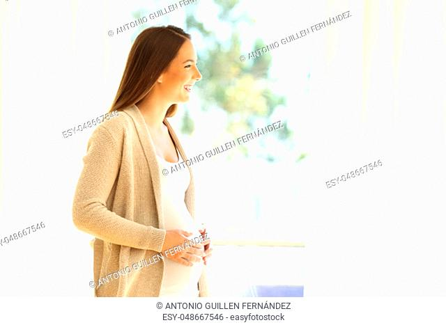 Side view portrait of a pregnant lady looking through a window standing at home