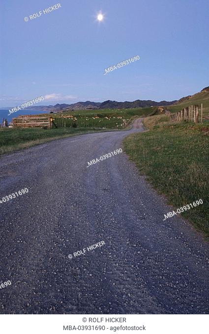 New Zealand, north-island, Taranaki, coast-street, sun, back light, North Taranaki Bight, street, country road, dirt road, landscape, hilly, mountains, lake