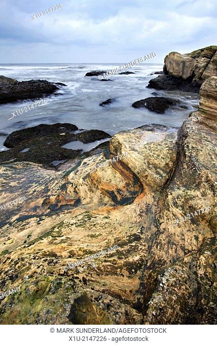 Colourful Rocks at Doo Craigs St Andrews Fife Scotland