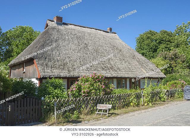 Detached house with a thatched roof at Cape Arkona, Putgarten, Rügen, Mecklenburg-Vorpommern, Germany, Europe