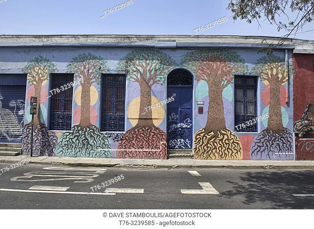 Street art in the bohemian quarter of Barrio Bellavista, Santiago, Chile