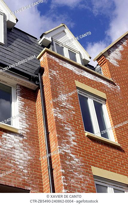 A white powdery deposit, called efflorescence is common on new brick walls. It is caused by salts in the bricks reacting with rain-water as soluble salts are...
