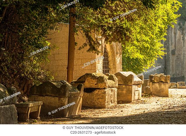 Sarcophagi, Alyscamps, sarcophagi alley, gallo roman period, Arles, 13, Provence, France