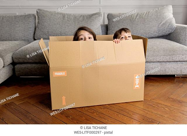 Two little children hiding together in a cardboard box at home
