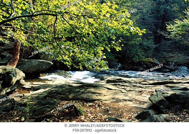 White Oak Canyon trail. Shenandoah National Park. Virginia. USA