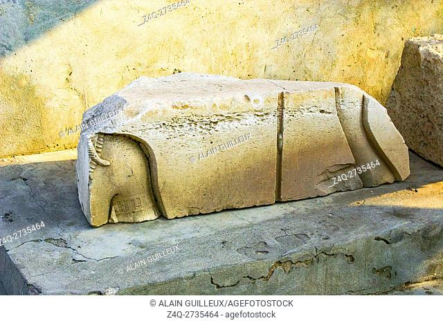 Egypt, Nile Delta, Tanis, artifacts displayed near the mission house : Sunk relief