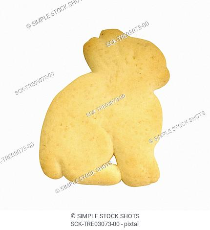 animal cracker