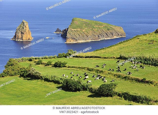 Graciosa Nature Park, Graciosa island. Azores. Portugal