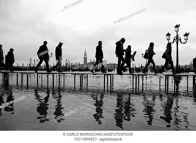 People on a gangway during high tide in St  Mark's square, acqua alta, Venice, Italy, Europe