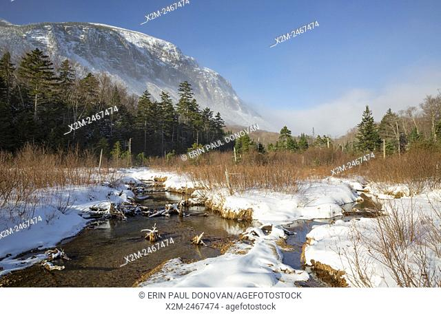 Franconia Notch State Park - Cannon Mountain from along the Pemi Trail in the White Mountains, New Hampshire USA