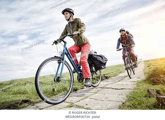 Germany, Schleswig-Holstein, Eiderstedt, couple riding bicycle through salt marsh