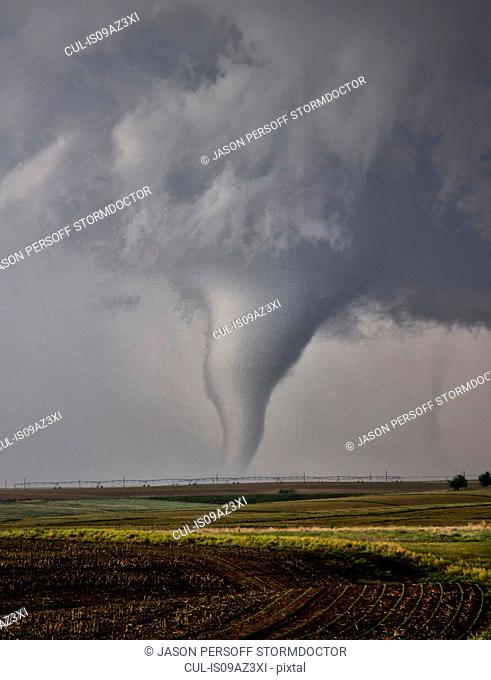 A cone tornado zig-zags over the open plain