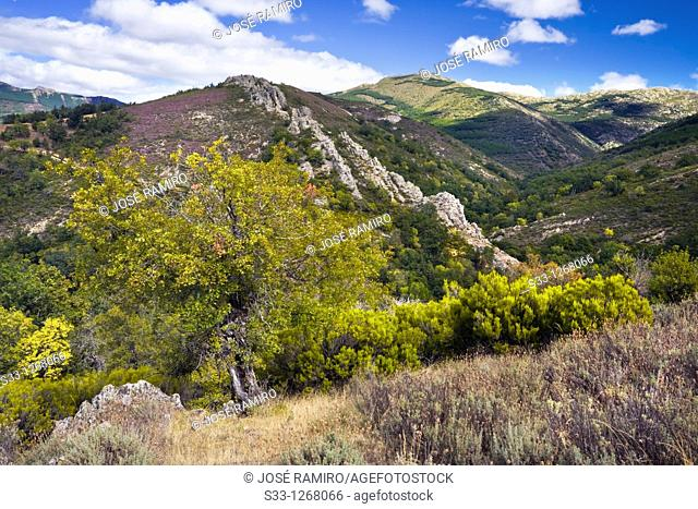 Sierra de la Puebla Madrid Spain