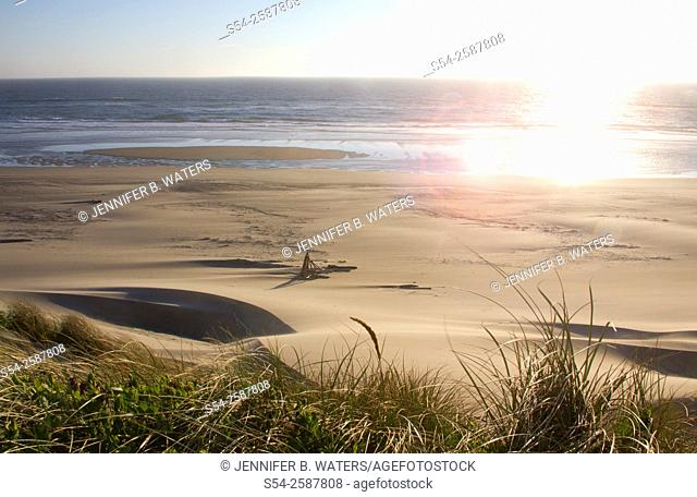 Oregon Dunes National Recreation Area, Florence, Oregon, USA