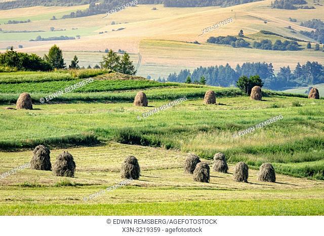 Haystacks dry in the sun in Niedzica, Lesser Poland, Poland